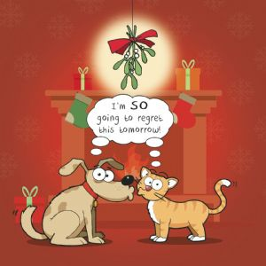 CANX49  Regretful Cat & Dog Christmas Card